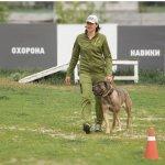 Кинолог, инструктор, дрессировка собак Киев