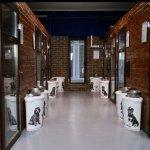 Гостиница хостел для собак передержка собак на время отпуска Ирпень Буча Ворзель