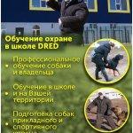 Подготовка служебных и охранных собак, защита дома, охрана територии.