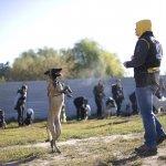 Дрессировка собак - коллективные занятия с собаками